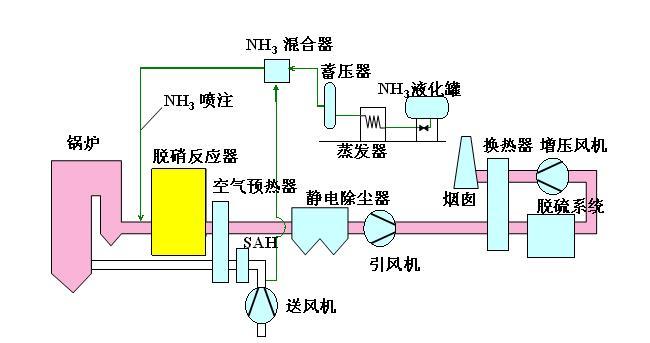 Flu Gas Denitration